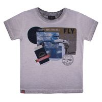 0702.27337-180201___cinza___camiseta_masculino_quimby_boys_airlines1